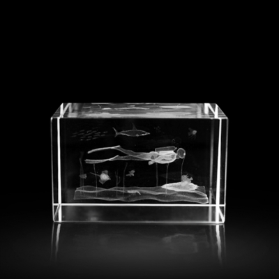 3d Kristal Balık Adam