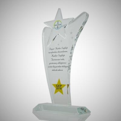 Yıldız Plaket 22